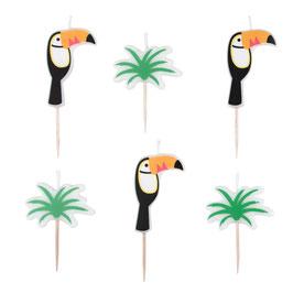 6 bougies anniversaire toucans et feuilles de palmiers my little day