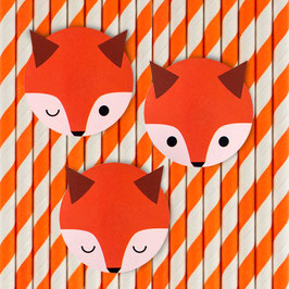 12 pailles rayées orange et blanc avec renard my little day
