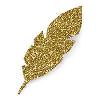 10 petites plumes dorées en carton