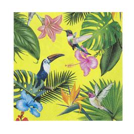 20 grandes serviettes oiseaux tropicaux
