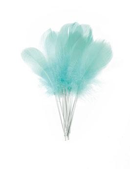 12 plumes vert menthe sur tiges malléables