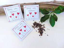 Sachet à graines en carton blanc, coeurs rouges