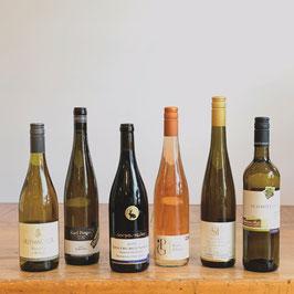 Wein Kaddong mit 6 Flaschen