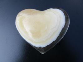 Zebracalciet hart