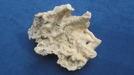 Calciet stalactiet