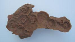 Stromatoliet 7