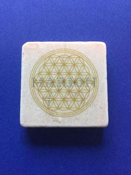 Magnet gold 5x5cm