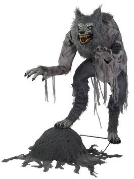 Furchteinflösender Werwolf Animatronic Halloween Deko (Lanky Werewolf) - Vorverkauf (Lieferbar ca. Anfang Oktober 2021)