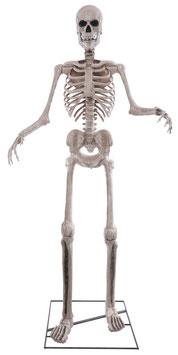 Sprechendes XXL Skelett Animatronic Halloween Deko - Vorverkauf (Lieferbar ca. Anfang Oktober 2021)