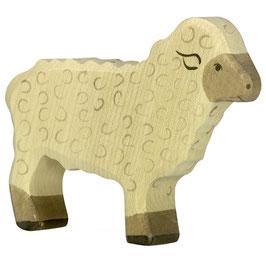 Schaf - stehend