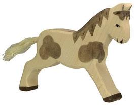 Pferd - gefleckt, laufend