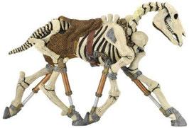 Skelettpferd