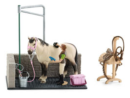 Pferde-Waschplatz - mit Pferd