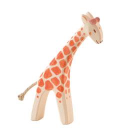 Giraffe - klein gebeugt