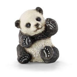Panda Junges - spielend