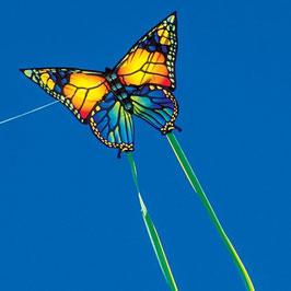 Schmetterling Drachen