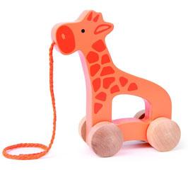 Nachzieh Giraffe