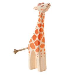 Giraffe - klein Kopf hoch