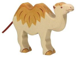 Kamel  Holztiger