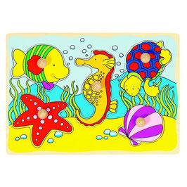 Steckpuzzle - Seepferdchen
