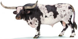 Texas Longhorn - Bulle
