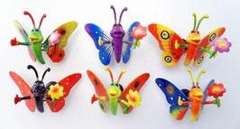 Schmetterling / Butterfly Magnete