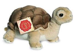 Schildkröte - 20cm