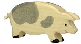Schwein - gefleckt