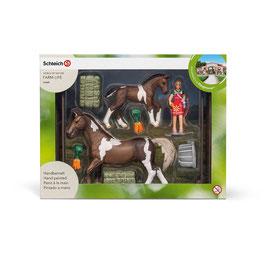 Pferdefütterung Trakehner