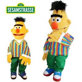 Bert  - 35cm. - Sesame Strasse