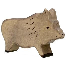 Wildschwein - Eber