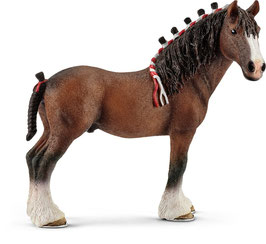 Clydesdale Walllach