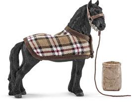 Friese Pferdepflegeset
