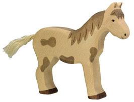 Pferd - gefleckt, stehend