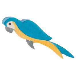 Papagei blau