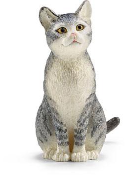 Katze - sitzend