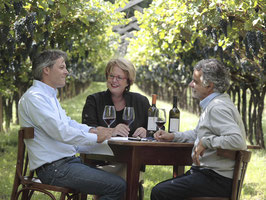 Weinseminar: Weine aus dem Trentino - Ein Abend mit den Weinen von Endrizzi