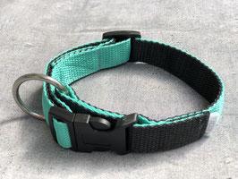 Hundehalsband Mintfarben
