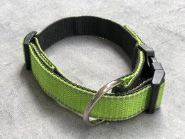 Hundehalsband Apfelgrün mit Reflektor