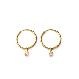 hoops zirconia gold