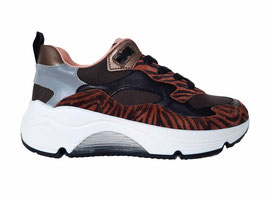 RONDINELLA Sneaker tijger