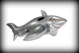 Wehncke Reittier Hai