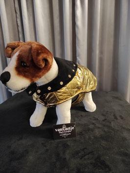 """Hundemantel GR. S """"Golden Nugget"""""""