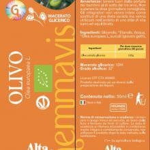 gemmavis olivo alta natura