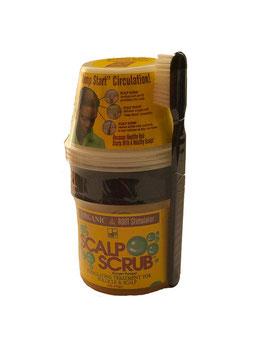 Organic Stimul. Scalp Scrub-170g