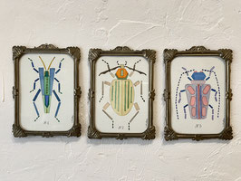 Triptyque aquarelle insectes