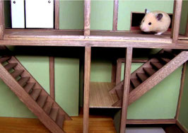Hamster Escape Room