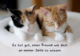 """Karte """"Freund"""""""