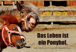"""Karte """"Ponyhof"""""""