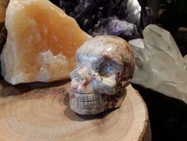 (28)schedel